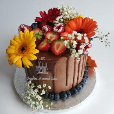 Chocolate & Strawberry Drip Cake